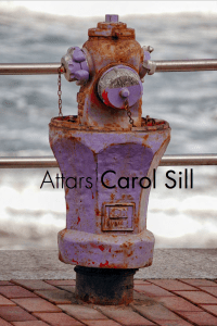 Front cover of the book Attars by Carol Sill. Book cover designed by James K-M
