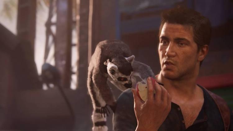 Ehi guarda un lemure