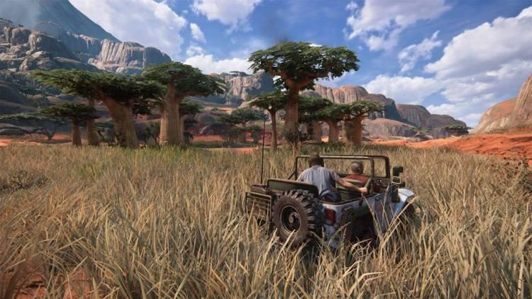 Nell'erba del Madagascar