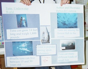 A science poster can teach about a topic AND illustrate a science poem.