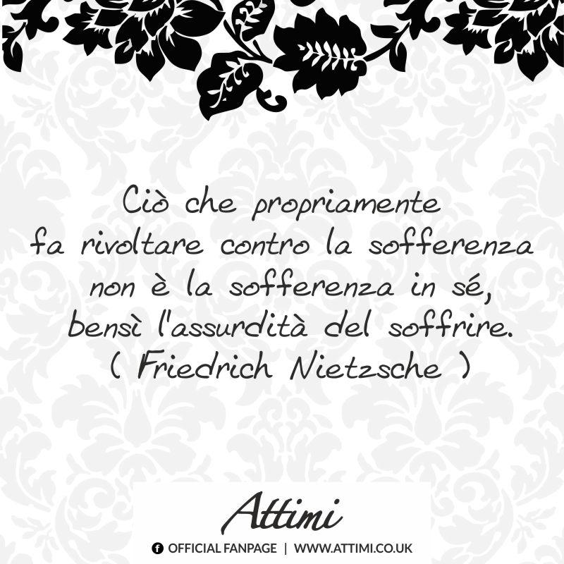Ciò che propriamente fa rivoltare contro la sofferenza non è la sofferenza in sè, bensi l'assurdità del soffrire. ( Friedrick Nietzsche )