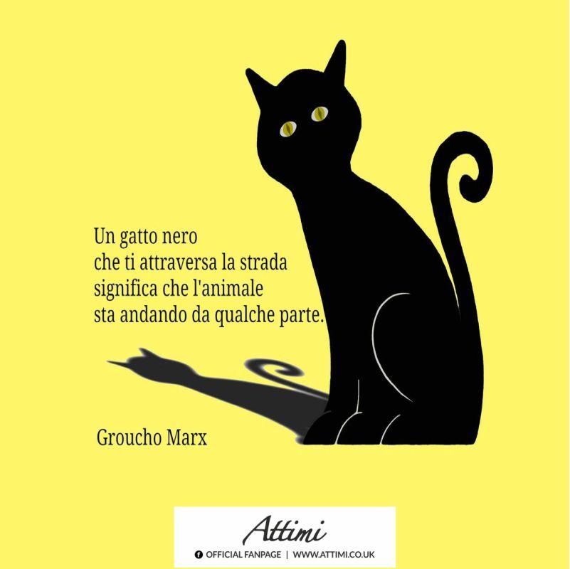 Un gatto nero che ti  attraversa la strada significa che l'animale sta andando da qualche parte . ( Groucho Marx)