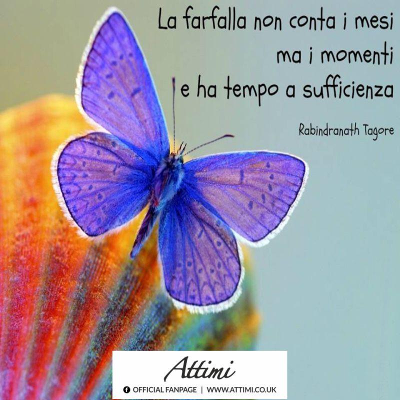 La farfalla non conta i mesi ,ma i momenti e ha tempo a sufficienza. (Rabindranath Tagore)