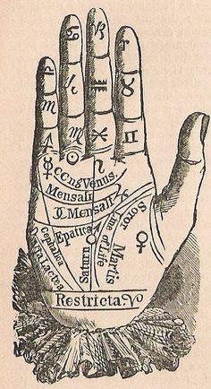 I significati delle linee sul palmo della mano