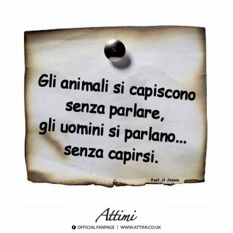 Gli animali si capiscono senza parlare, gli uomini si parlano…senza capirsi.
