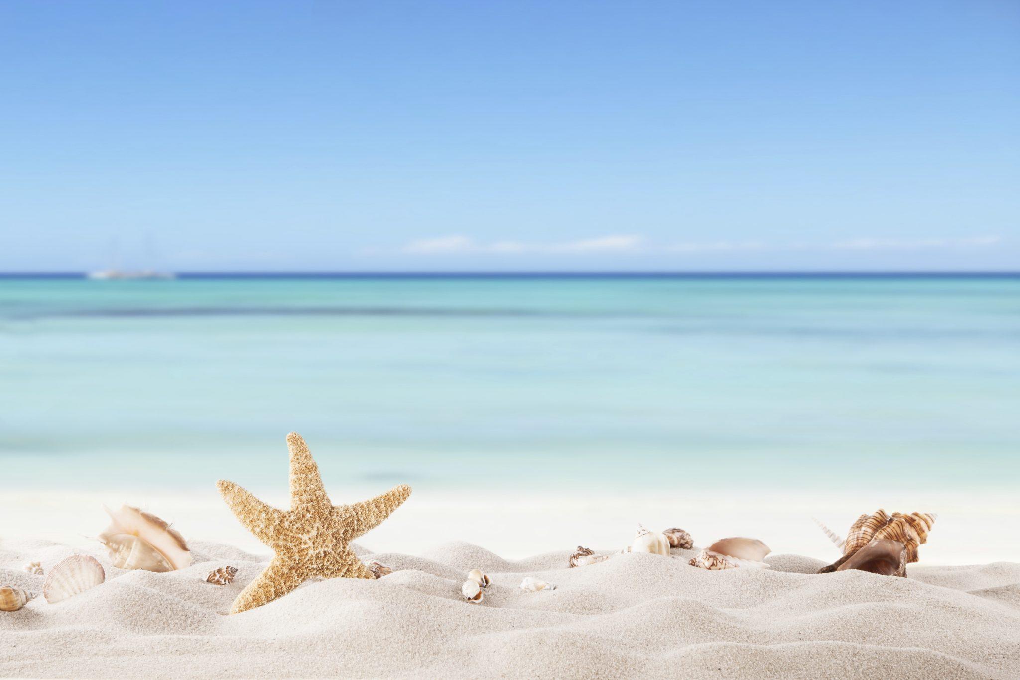 Il bambino che scrive sulla spiaggia.