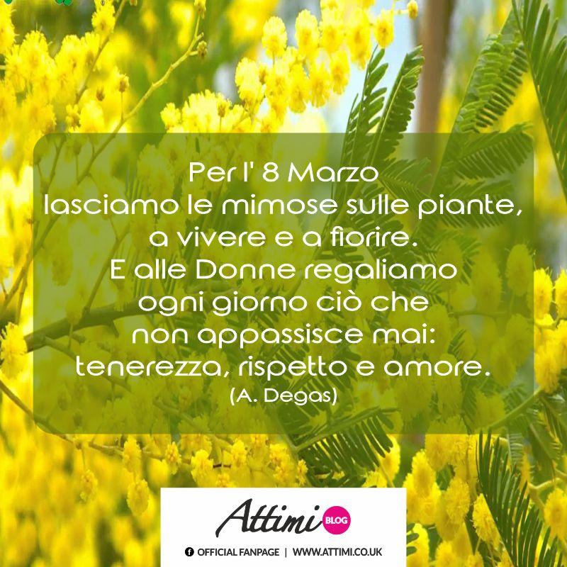 Per l' 8 Marzo lasciamo le mimose sulle piante, a vivere e a fiorire. E alle donne regaliamo ogni giorno ciò che non appassisce mai: tenerezza, rispetto e amore. (A. Degas)