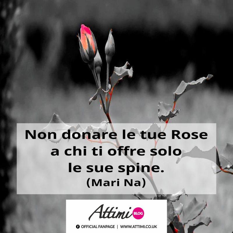 Non donare le tue Rose a chi ti offre solo le sue spine. (Mari Na)