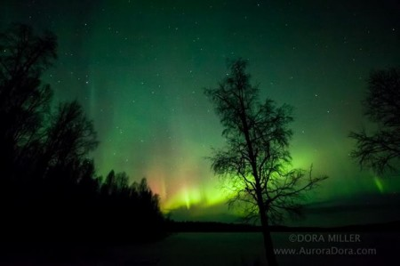June-GrAcnseth-Pan-Aurora-19122013BPL_1_1387532550_lg