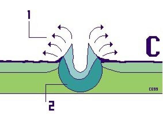 figura C