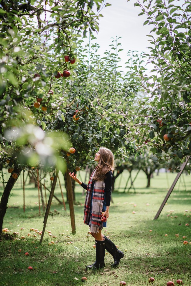 apple picking, plaid scarf, madewell