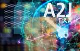 A2J Interview