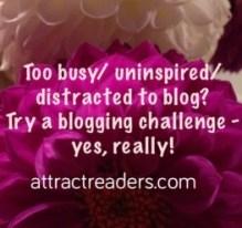 blogging challenge for women bloggers