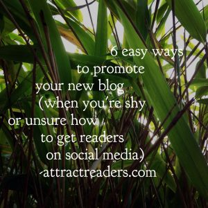 Easy ways to Promote your new blog