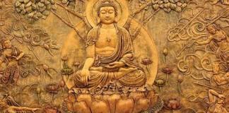 buddha,buddha quotes,buddha darshan