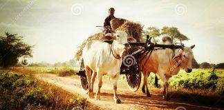 village story,
