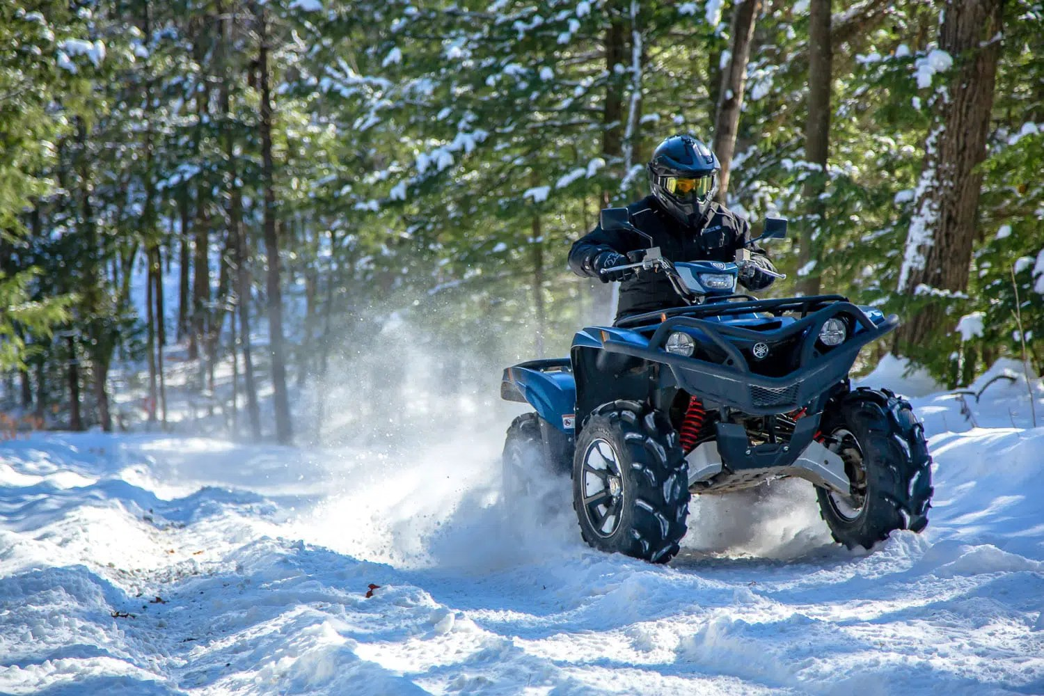 Yamaha Grizzly Se Review