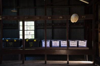 Visite de la mine de Bendigo - la salle des pendus (ils font pendre leurs vêtements)