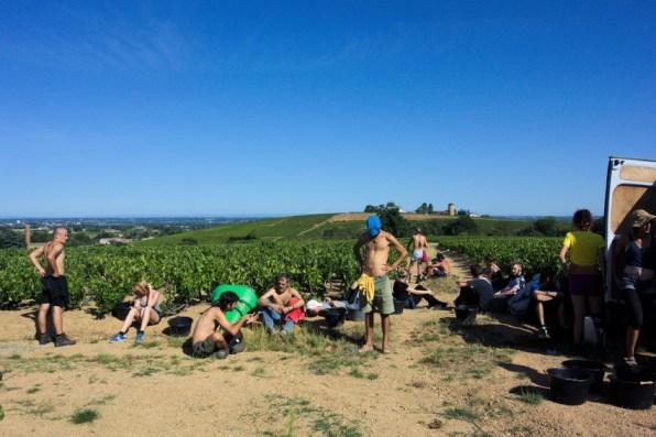 Pause de l'après-midi dans les vignes du Beaujolais