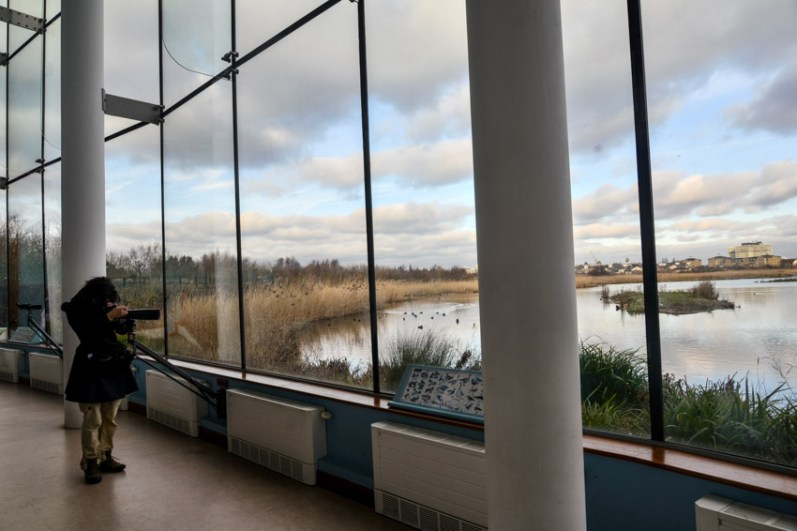 london_pass_wetland_centre