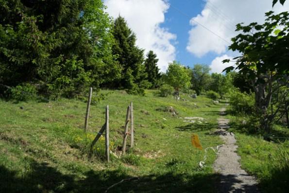 Randonnée Le Chasseron, canton de Vaud (Suisse)