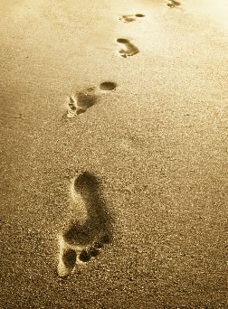 Image result for follow footsteps