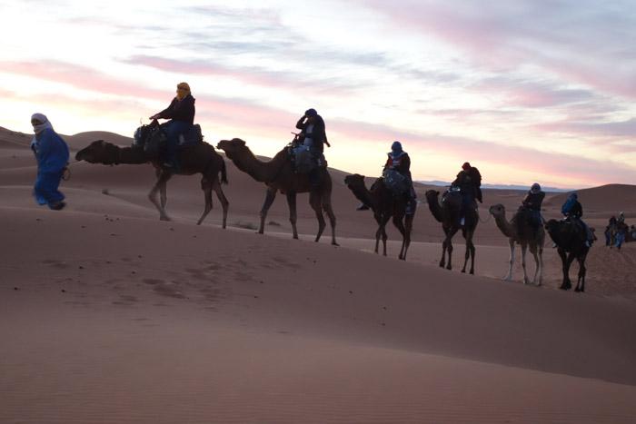 Camel Trekking, Auberge Café Du Sud