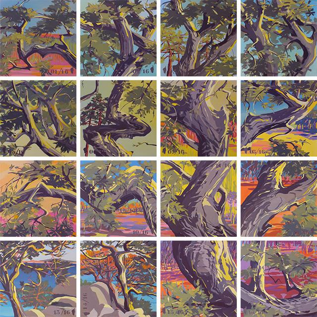 Installation en 16 peintures - Arbres de Corse - Cala Rossa - Peinture de Corse de Michelle