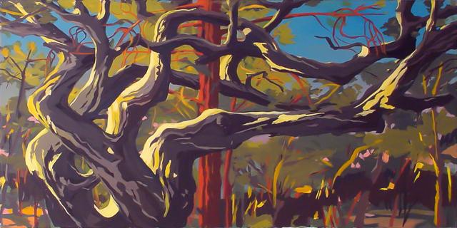 Chêne et pin enlacés à Cala Rossa - Peinture de Corse de Michelle Auboiron