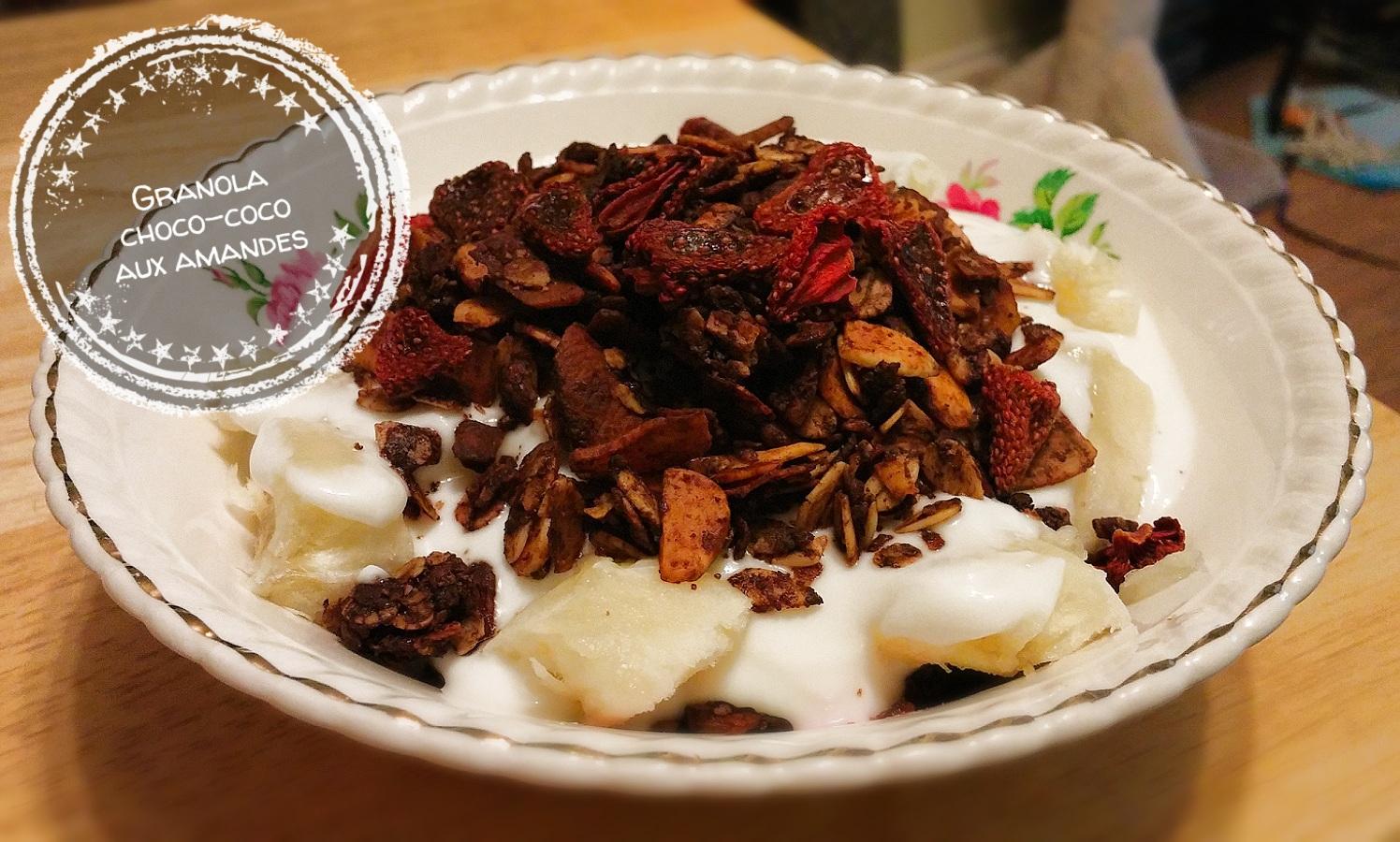 Granola choco-coco aux amandes - Auboutdelalangue.com