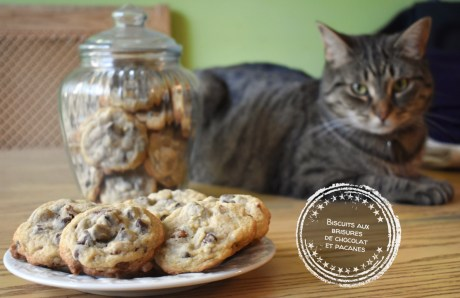 Biscuits aux brisures de chocolat et pacanes - Auboutdelalangue.com (12)
