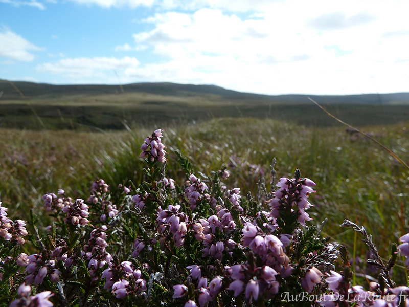 Parc National Connemara