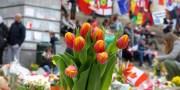 Fleurs Bourse