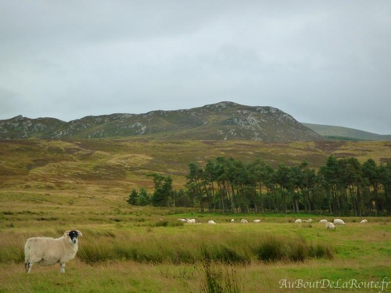 Vue sur les MonadhLiath Mountains
