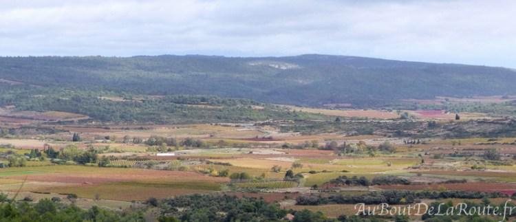 Plaine viticole des Corbières
