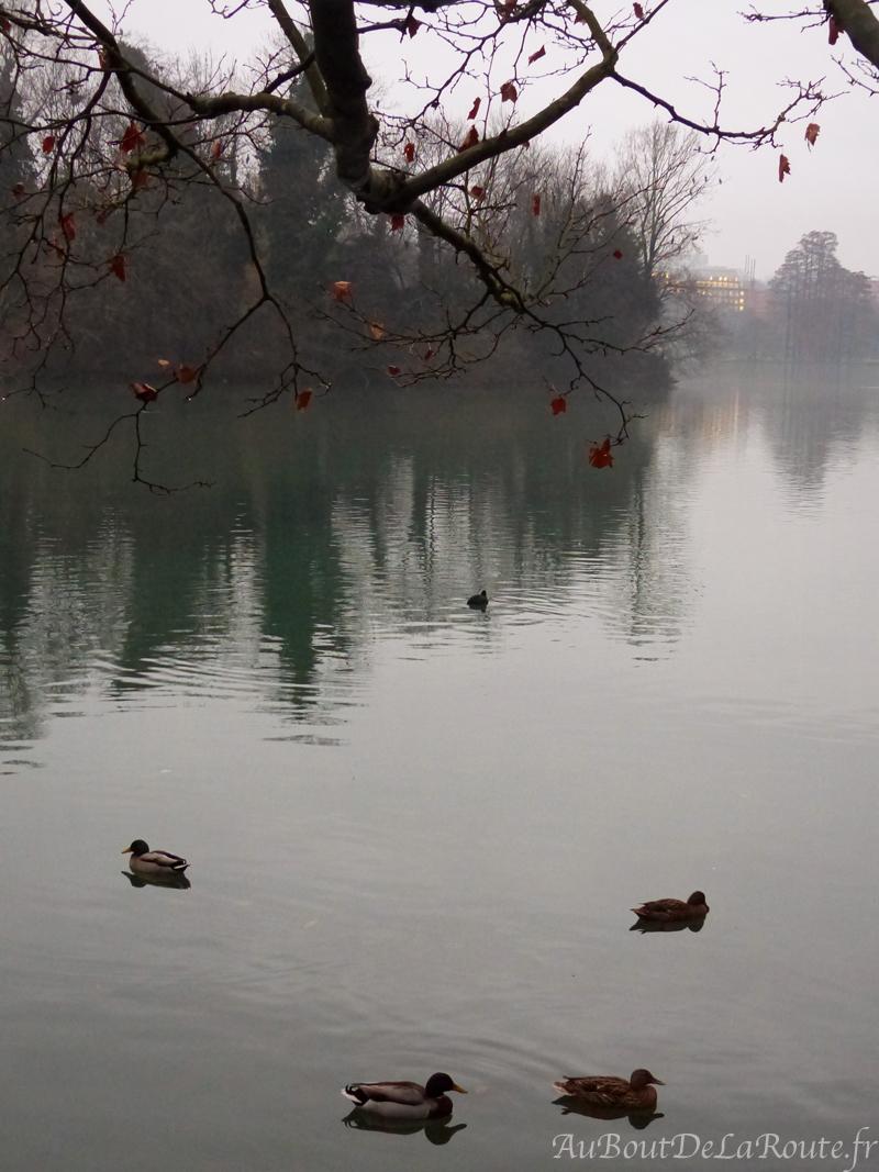 Lac du Parc de la Tete dOr
