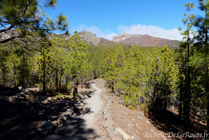 Vue sur la caldeira et Mt Guajara