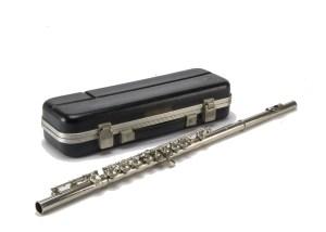 Flute cased