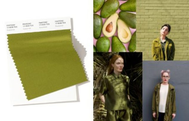 Image result for FASHION PANTONE guacamole