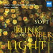 """Soft Blink of Amber Light"" – variety of new composers = MSR Classics"