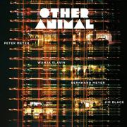 Other Animal Album Cover