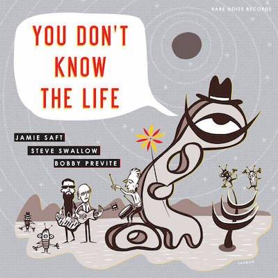 Jamie Saft, Steve Swallow, Bobby Previte – You Don't Know the Life – Vinyl LP – Rare Noise