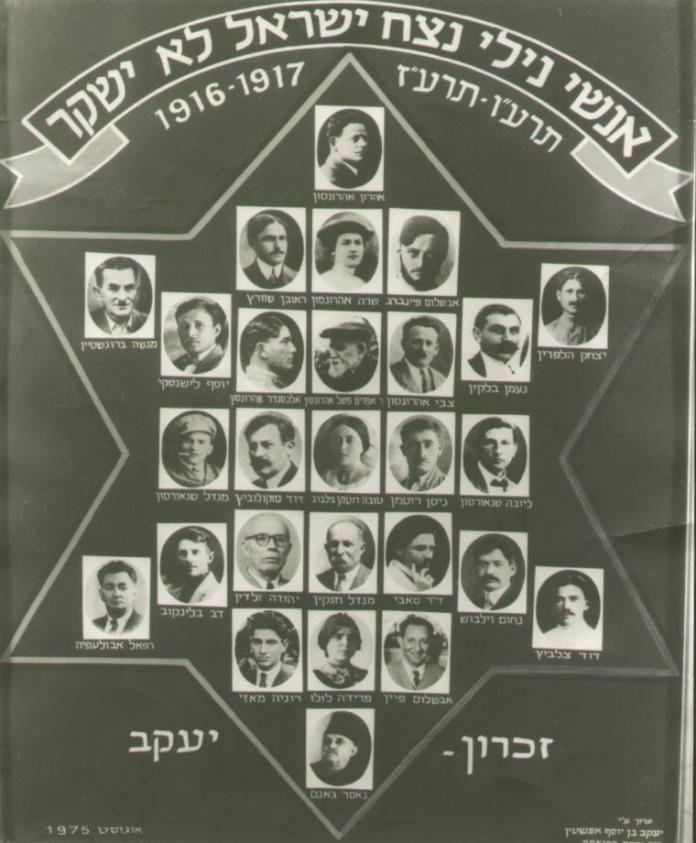 Ein Organigramm von Nili. Foto Nili Museum.