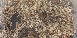 Detail aus einem Mosaik beim Ausgrabungsprojekt Hippos-Sussita im Susita-Nationalpark, Sommer 2019. Foto zVg / Times of Israel