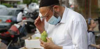 Das untersuchen der Etrog (Zitronenbaumfrüchte) in einer Strasse in Bnei Brak, vor dem jüdischen Fest von Sukkot während des Coronavirus Lockdown. Bnei Brak, 30. September 2020. Foto Eitan Elhadez-Barak/TPS