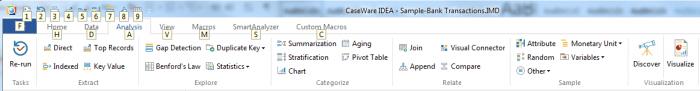 CaseWare IDEA Header Ribbon with Hotkeys Screenshot