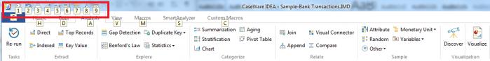 CaseWare IDEA Header Ribbon with Quick Access Hotkeys