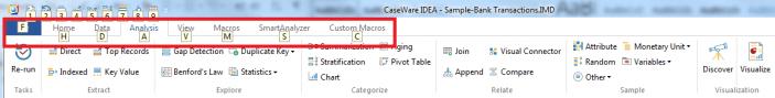 CaseWare IDEA Header Ribbon with Tab Hotkeys