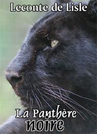 Illustration: La Panthère noire - Leconte de Lisle