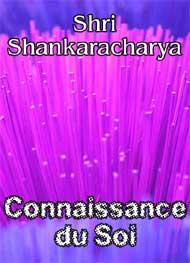 Illustration: Connaissance du Soi - shri shankaracharya